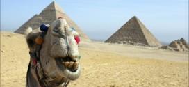 ISRAEL- IORDANIA- EGIPT   de la  445 €
